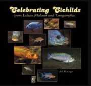 Celebrating Cichlids